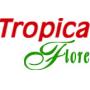Tropicaflore